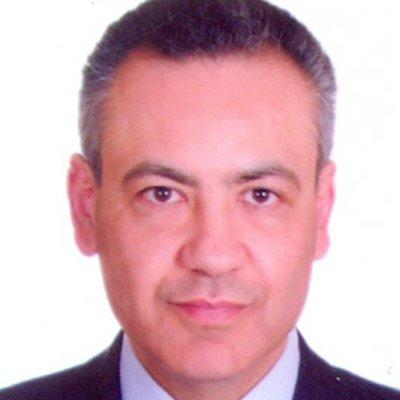 Prof Hussein Ghanem