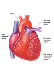Aortic Valve Replacement - Child Heart Treatment