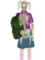 Backpack Safety Instructions - FREE - Homefarm Family Chiropractic
