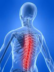 Dr Julia Meyer - Spine