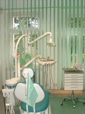 CZECH The Dentist - Bozeny Nemcove 452/7, Marianske Lazne, 35301,  0