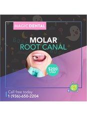 Molar Root Canal - Magic Dental Clinic