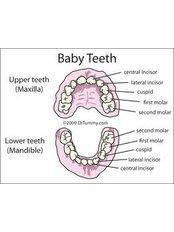 Paediatric Dentist Consultation - Rivera Dental Clinic