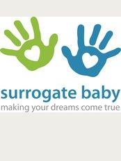 Surrogate Baby - pl. Pobedy, 10, 705, Kaliningrad, 236029,