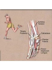 Ankle Injury Treatment - Energise Therapy,Sports Injury and Shockwave Therapy Clinic