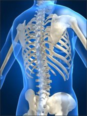 Spinal Rehabilitation - Neck and Back Injury - Dr Anne Dempsey Holistic Therapy and Sports Injury Physiotherapy Clinic
