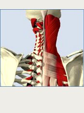 The Chartered Physiotherapy Clinic - Unit 10, Wrexham Technology Park, Wrexham, LL13 7YP,