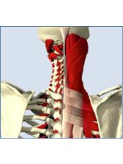 The Chartered Physiotherapy Clinic - Unit 10, Wrexham Technology Park, Wrexham, LL13 7YP,  0