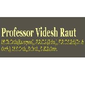 Professor Videsh Raut