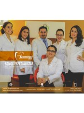 Dental Inc. - SPECIALIST TEAM