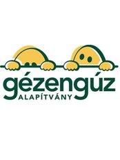 Gézengúz Alapítvány Cseppek Háza - General Practice in Hungary